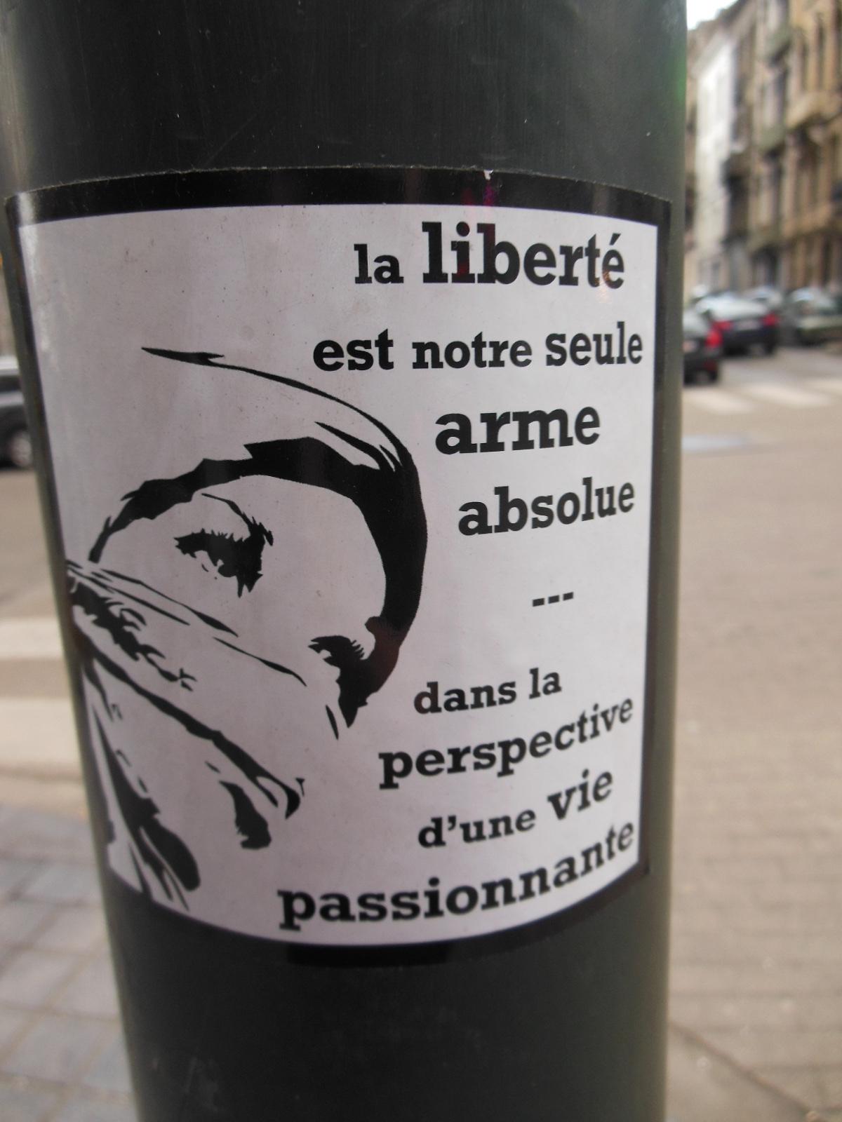 LiberT1